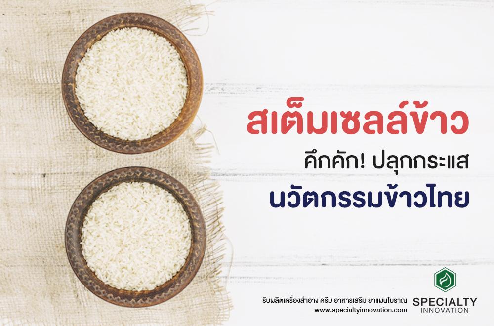 สเต็มเซลล์ข้าว ปลุกกระแสนวัตกรรมข้าวไทย