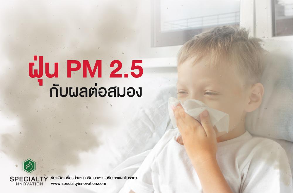 ฝุ่น PM 2.5 ที่มีผลกับสมอง